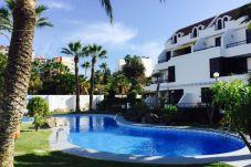 Apartment in Playa de Las Americas - COLON POOL VIEW, PLAYA DE LAS AMERICAS